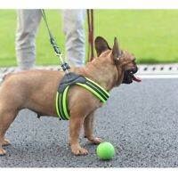 Pet Dog Control Harness Cat Adjustable Chest Strap Navy Vest Mesh Walk Collar
