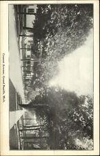 Grand Rapids MI Cresent Ave c1910 Postcard