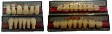 Denti x protesi resina 3 strati GOLDENT bocca 4 File dentista odontotecnico