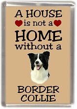 """Border Collie Dog Fridge Magnet """"A HOUSE IS NOT A HOME"""" by Starprint"""