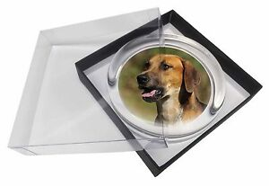 Foxhound Dog Glass Paperweight in Gift Box Christmas Present, AD-FH1PW