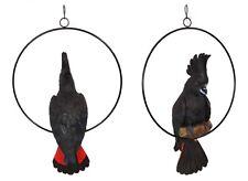 Australian Native Black Cockatoo in Ring Native Bird Garden Hanging Ornament 34c