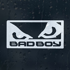 Bad Boy Eyes Car Decal Vinyl Sticker For Bumper Or Window Or Panel