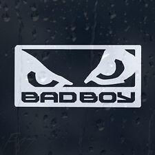 Bad Boy Eyes Car Decal Vinyl Sticker For Bumper Or Window Or Panel