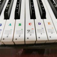Beginner Music Keyboard Piano Stickers 88/61/54/49Keys Set PVC Decals