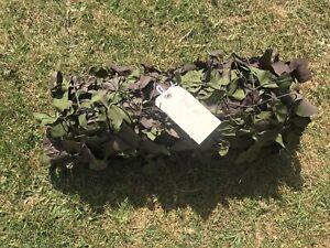 Genuine British Army Camouflage Camo Net Netting Hunting Military Den MK7