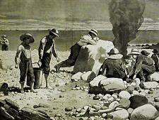 Winslow Homer CLAM BAKE at SEA SIDE Boys Around Campfire 1873 Art Print Matted