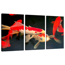 Set of 3 Pictures Black Red Canvas Wall Art Prints Koi Carp Fish 3094