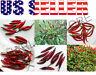 25+ THAI Hot Pepper MIX Seeds 6 Varieties Heirloom NON-GMO Purple Long Dragon US