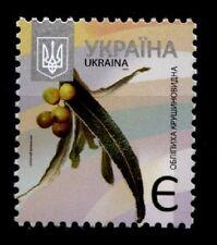 Bäume. Sanddorn (Hippophae rhamnoides). 1W. Ukraine 2013