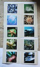 Full set of 10 Royal Mail PHQ 294 (2007) Sea Life postcards