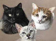 """Realistic Cat Pastel Portrait - 12x16"""" Original Fine Art Pastel Pencil Painting"""