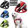 No Pull Pet Dog Harness Adj Mesh Training Reflective Puppy Vest & 2 Free Patches