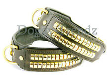 """22"""" Leather Dog Collar Brown Brass Studs 2"""" Wide Will Fit 17"""" To 19"""""""