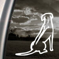 Rhodesian Ridgeback Dog White Sticker Decal Bumper Laptop Car White Sticker