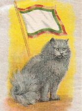 Vintage antique tobacco cigarette silk - use in crazy quilt - Persian Cat