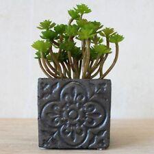 Moroccan Black Concrete Pot Planter 9cm Indoor Outdoor Garden Home Decor