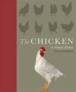 The Chicken a Natural History Dr Joseph Barber
