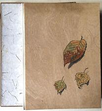 Schaeffer-Ast, O schöner grüner Wald, Kindrbücher, Illustrierte Bücher,