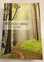 NIV HOLY BIBLE - LARGE PRINT - by Zondervan - New International Version