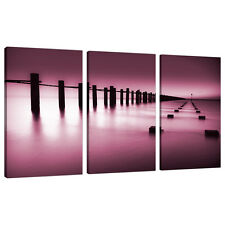 Set of 3 Plum Wall Art Canvas Pictures Living Dining Room Bedroom 3087