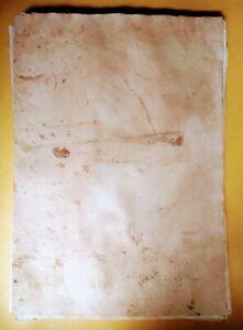 10 Handmade tè dye paper