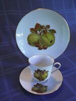 Vtg Bareuther Waldsassen Bavaria Tea Cup, Saucer, Plate Set ~ Fruits ~ 122 123