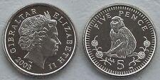 Gibraltar 5 Pence 2003 p775 unz.