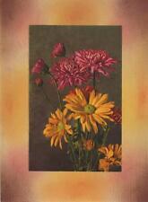 VINTAGE CHRYSANTHEMUM MUMS FLOWERS BOTANICAL COLLAGE PICTURE ART PRINT PASTELS