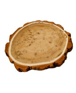 Baumscheibe Holzscheibe mit Rinde  geschliffen Fi 15-25 cm; 2-3,5 cm  / AKAZIE