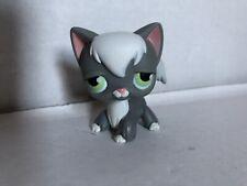 Authentic Littlest Pet Shop lps angora longhair cat kitty no number Sam's club