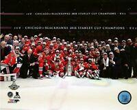 "Chicago Blackhawks 2015 Stanley Cup Team Celebration Photo (Size: 16"" x 20"")"