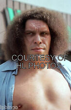 4x6  WRESTLING PHOTO   ANDRE THE GIANT   A2001     wwe   tna