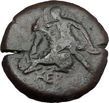 CHERSONESOS Tauric Chersonesos Artemis Stag Bull Countermark Greek Coin i38248