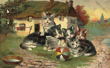 Vintage Cat Postcard,6 Cute Kittens,Colorful Ball,Used,1908