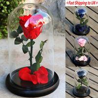 Forever Rose Flower Festive Preserved Immortal Fresh Rose in Glass Wedding Gift