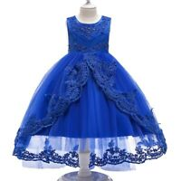 Girl's Lace Dovetail Princess Dresses Flower Girl Fancy Party Gown Kid Xmas Gift