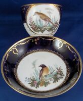 Antique 19thC English Spode Porcelain Bird Scene Cup & Saucer Scenic Porzellan