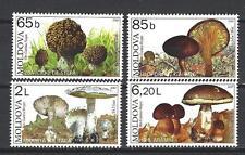 Moldavie 2007 champignons Yvert n° 502 à 505 neuf ** 1er choix