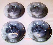 4 Stück Hochwertige Glasschale Katzen Tricolor Kitten Schale Mario Moreno Neu