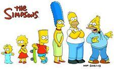 Die Simpsons Season / Staffel 1+2+3+4+5+6+7+8+9+10  DVD  Collection NEU