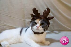 [Reindeer Pet Hat for Cats and Dogs] Halloween / Costume / Cap /Christmas