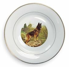 Tervueren Belgian Shepherd Dog Gold Rim Plate in Gift Box Christmas P, AD-BST1PL