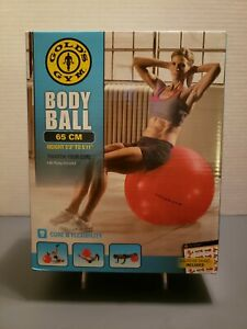 Gold's Gym Body Ball Exercise Work Out Ball 65cm w/ Pump