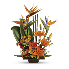 Teleflora's Bamboo Dish Collection Dark, Style# 10N700 - Vase Only!