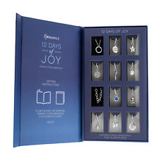 Advent Calendar 12 Days of Christmas Joy Swarovski Set Charms Bracelet +Necklace