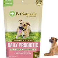 DOG CHEWS Daily Probiotic Digestive Health Supplement 60 Bite-Sized Treats