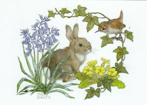 Postkarte: Molly Brett - Hase und Vogel in Glockenblumen