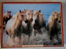 Waddingtons Animals 500 - 749 Pieces Jigsaw Puzzles