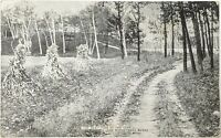 Lake Minnetonka Scene Antique Postcard The Best Time Of The Year Haystacks Road